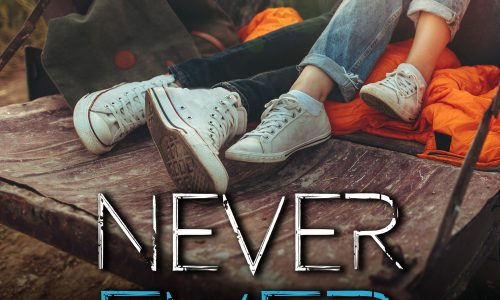 Segnalazione: Never Ever – Secret life series 2 di Valentina Ferraro